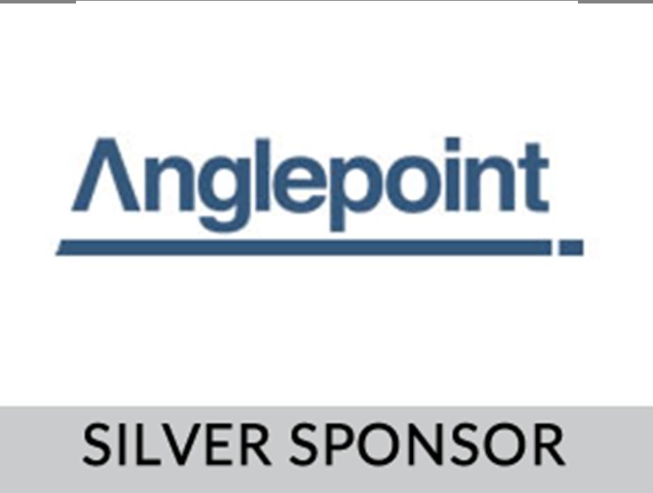 Anglepoint Inc.