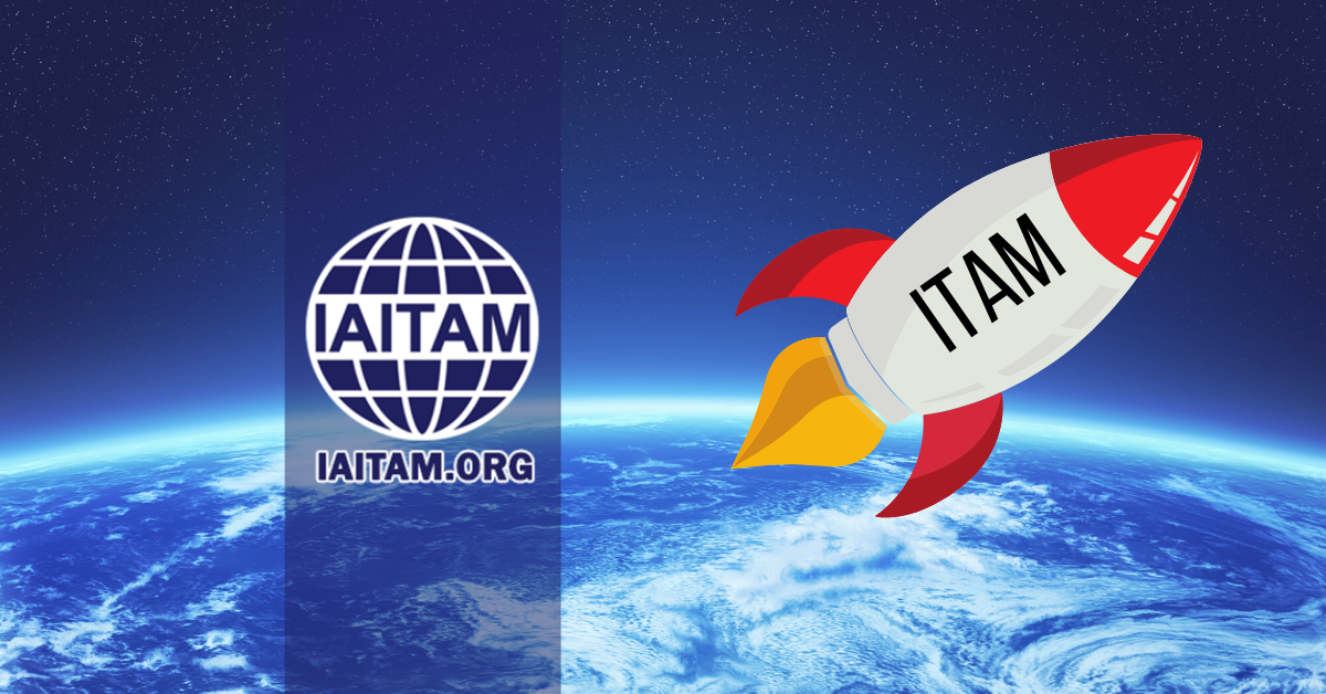 Why ITAM Is Going to Continue to Skyrocket