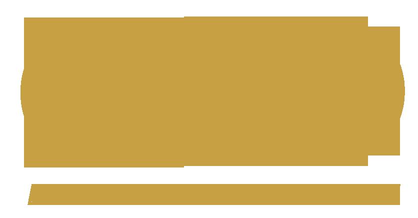 CXO logo