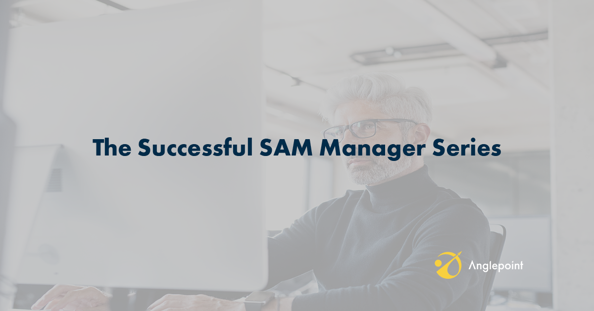 The Successful SAM Manager Series